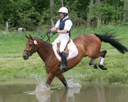 Andreas Brandt wurde mit FRH Escada JS Vizeweltmeister bei den siebenjährigen Vielseitigkeitspferden. Fotos: Jutta Wego
