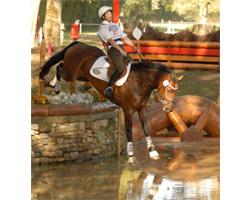 Andreas Brandt liegt bei der WM für Vielseitigkeitspferde nach dem Gelände bei den siebenjährigen Pferden mit FRH Escada JS auf dem 7. Platz. Foto: Rousseau
