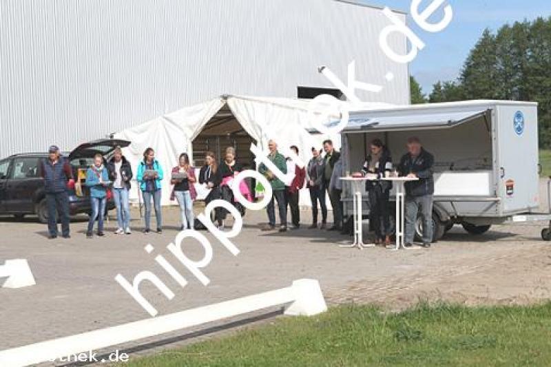 Stutbuchaufnahme in Güstrow, Cavallo-Arena